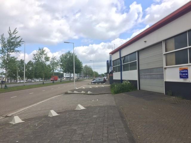 sex datingsite Rotterdam